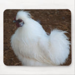 White Silkie Chicken Mouse Pad