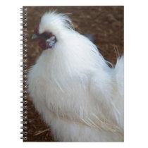 White Silkie Chicken Notebook