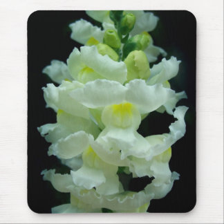 White Snapdragon Mouse Pad