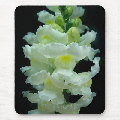 White Snapdragon mousepad