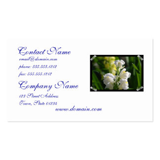 White Snapdragons Business Card