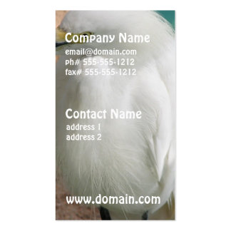 White Snowy Egret Double-Sided Standard Business Cards (Pack Of 100)