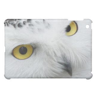 White Snowy Owl Face Eyes Beak Bird Wildlife iPad Mini Cover
