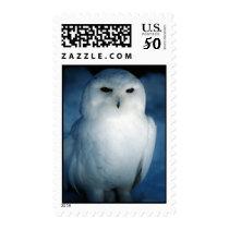 White Snowy Owl Postage Stamp