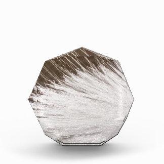 White Spark Acrylic Award
