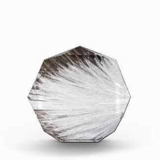 White Spark Award