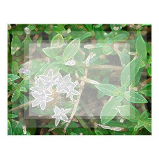 white sparkle flowers against green letterhead