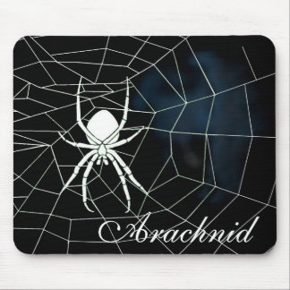 White spider in web, Arachnid Mouse Pad