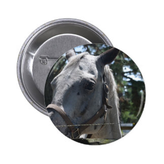 white spotted horse pin