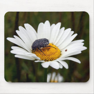 White-spotted Rose Beetle Mouse Mat