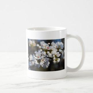 White Spring Blooming Bradford Pear Blossoms Coffee Mug