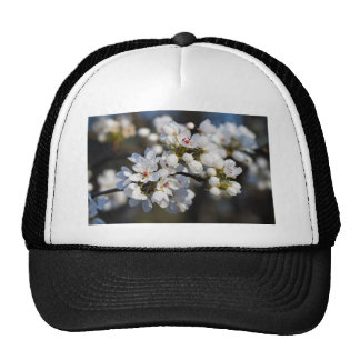 White Spring Blooming Bradford Pear Blossoms Trucker Hat