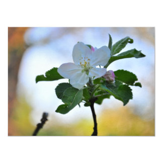 "White spring flower 6.5"" x 8.75"" invitation card"