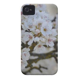 White Spring Flowering Tree iPhone 4 Case