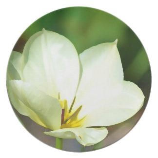White Spring Tulip Plate