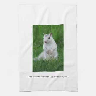 White Squirrel of Brevard Hand Towel