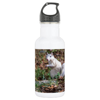 White Squirrel of Brevard Water Bottle