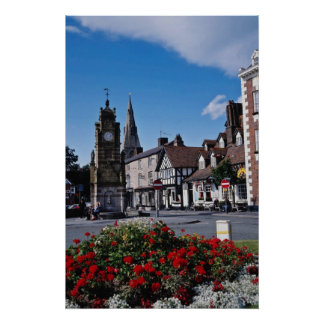 White St. Peter's Square, Ruthin, Clwyd flowers Poster