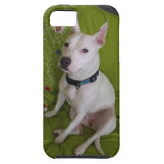 White Staffy Dog iPhone SE/5/5s Case