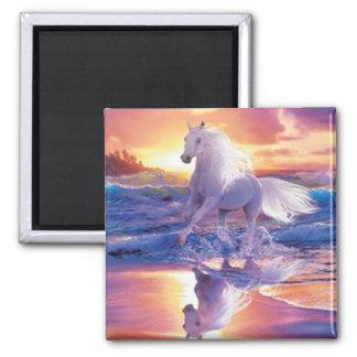 White Stallion Magnet