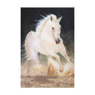 White Stallion on canvas