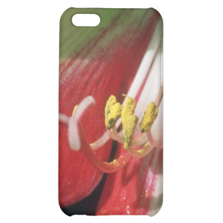 White Stamens flowers Case For iPhone 5C