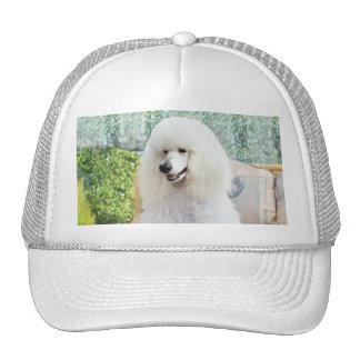 White Standard Poodle Mesh Hat