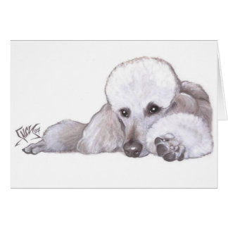 White Standard Poodle in Repose Card