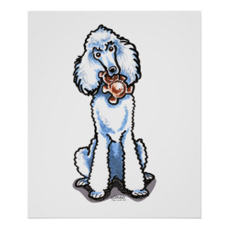 White Standard Poodle Teddy Bear Poster