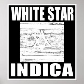 WHITE STAR INDICA POSTER