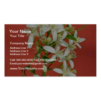 white Star jasmine (Jasminum pubescens) flowers Business Card Template