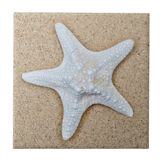 White Starfish at the Beach Tile