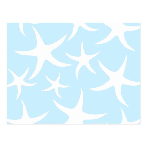 Light Blue Starfish