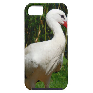 White Stork Bird iPhone 5 Covers