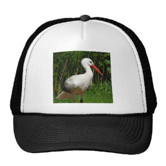 White Stork Bird Trucker Hat