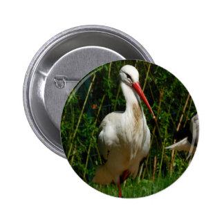 White Stork Pinback Button