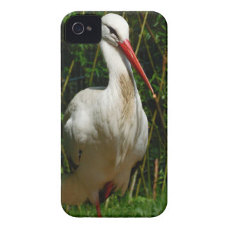 White Stork iPhone 4 Case