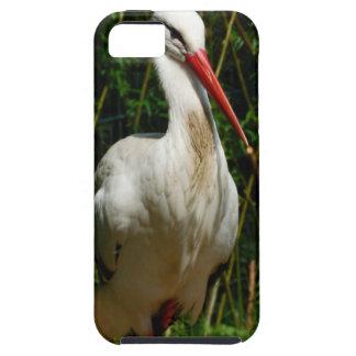 White Stork iPhone 5 Case