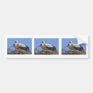 White stork in its nest bumper sticker