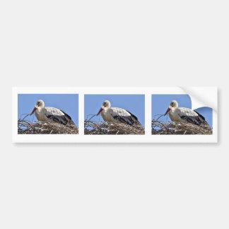 White stork in its nest bumper sticker