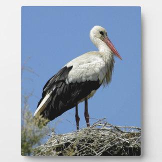White stork on its nest plaque