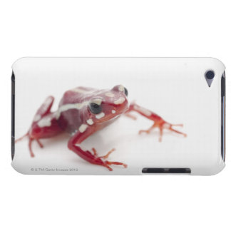 White-striped Poison Dart Frog 2 iPod Touch Case-Mate Case