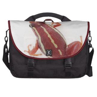 White-striped Poison Dart Frog Commuter Bag