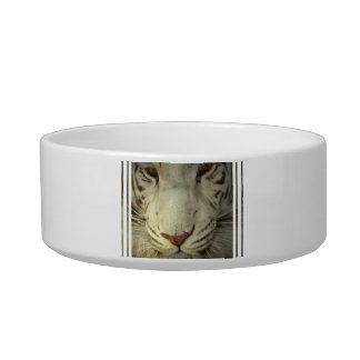 White Striped Tiger Cat Bowls