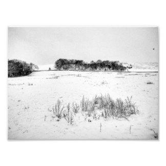 White Stuff Photo Print