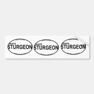 White Sturgeon Euro Stickers Bumper Sticker