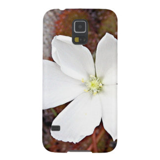 White sundew flower in bloom galaxy s5 cover