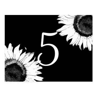 White Sunflowers on Black Table Numbers Postcard