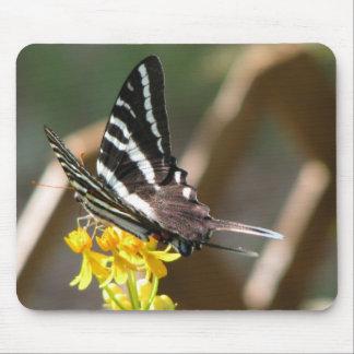 White Swallowtail Mouse Pad