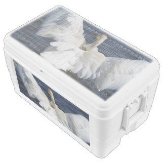 White Swan 48 Quart Ice Chest